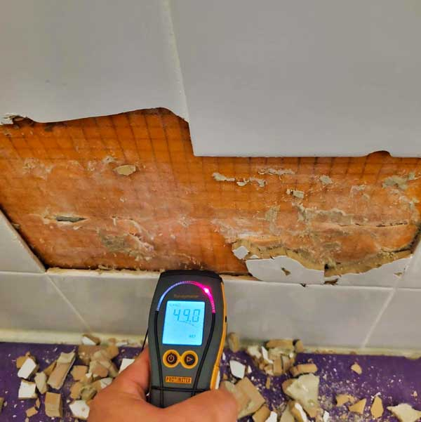 Using device to check for mold